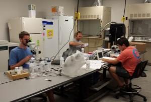 Hu's Lab