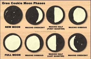 Oreo Cookie Moon Phases