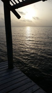 The sun rises over the bay as begin our sampling process.
