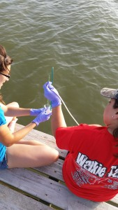 Collecting a microlayer water sample.