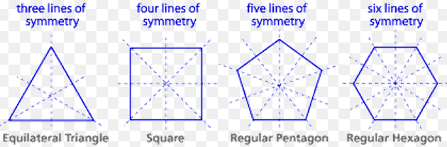 lines of symmetry in regular polygon