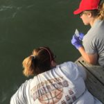 This is Lisa and Becka leaning over the dock to collect a sample at the first location.