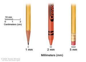 Figure 1 Large micro-plastics < 5mm and Small micro-plastics <1mm